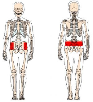 pain points lower back and round ligament