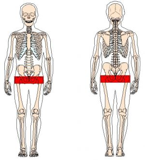 pain points hip and pelvic